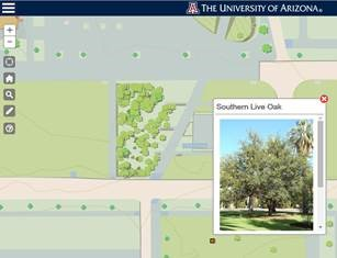 image relating to University of Arizona Campus Map Printable referred to as The Higher education of Arizona Campus Maps